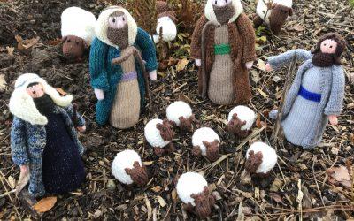 Seek the Sheep