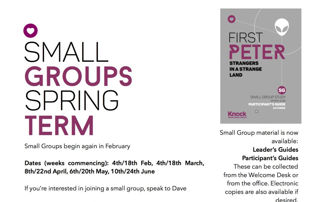 Small Groups – Spring Term